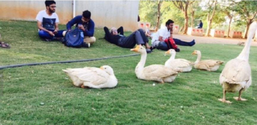 Zabi Khan's college campus