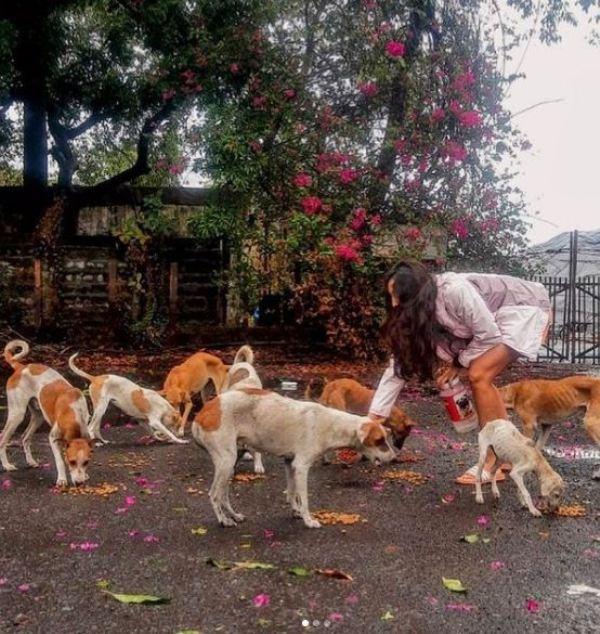 Maana Patel feeding stray dogs
